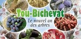"""Résultat de recherche d'images pour """"Tou Bichvat"""""""